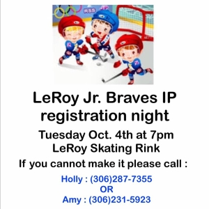 Hockey Registration for Grades 2 and Under @ LeRoy Community Centre